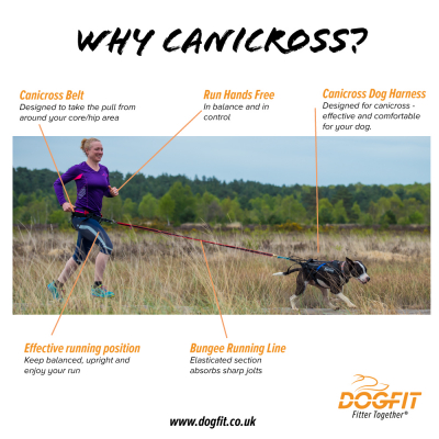 Running with your Dog – the benefits of using canicross equipment